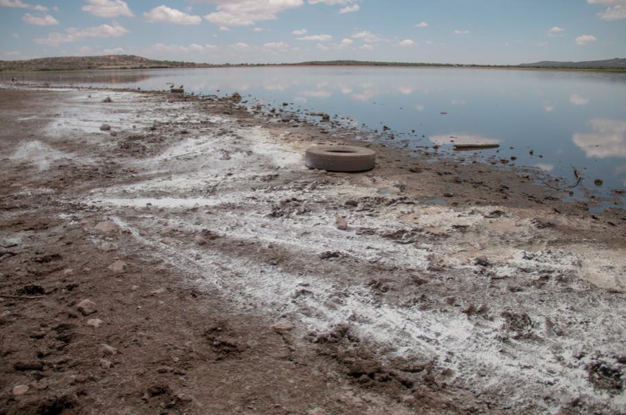 Zacatecas: En el olvido, La Zacatecana (NTR)