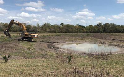 Veracruz: Se agrava sequía; bajan niveles de ríos y presas (Al calor político)