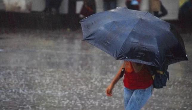 Mérida: Fuertes lluvias tiran árboles y provocan apagones (El Universal)