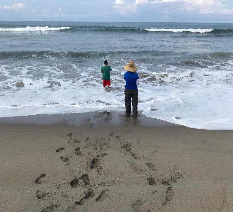 Sinaloa: Buscan certificación como playa limpia de Estrella del Mar y Luna Bonita (Línea Directa)