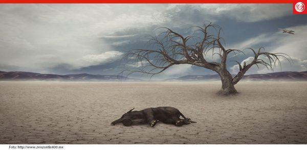 Estados Unidos: En el año  2050 se acabará el agua: NESTLÉ (Reversos.mx)