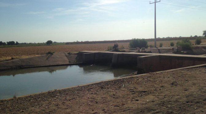 Sinaloa: Solo hay agua para el 40% de la siembra de maíz en la zona centro (Linea Directa)