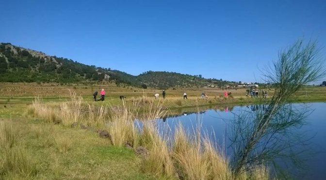 Hidalgo: El nivel de agua en las presas, sin riesgos (El Sol de Hidalgo)
