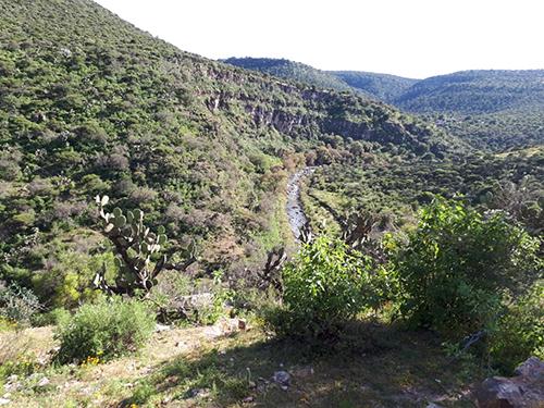 Zacatecas: Proyecto de la presa Milpillas sí tiene recursos para 2020: Samuel Herrera (La Jornada)