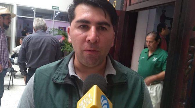 Chiapas: Piden ambientalistas tener conciencia en el uso de pilas ( Diario Ultimátum)