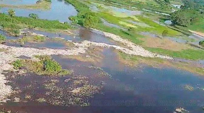 Veracruz: Tiraderos clandestinos contaminaron el Río Blanco: PMA (El Sol de Orizaba)
