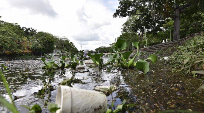 Tabasco: Listo el proyecto de rescate de la laguna de las Ilusiones (Novedades de Tabasco)