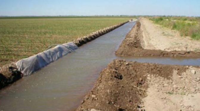 Sinaloa: cultivos de baja demanda de agua por bajo nivel en las presas (ADN)