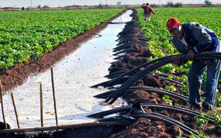 Sinaloa: Se suman módulos de riego a lucha por el presupuesto (ADN portal)