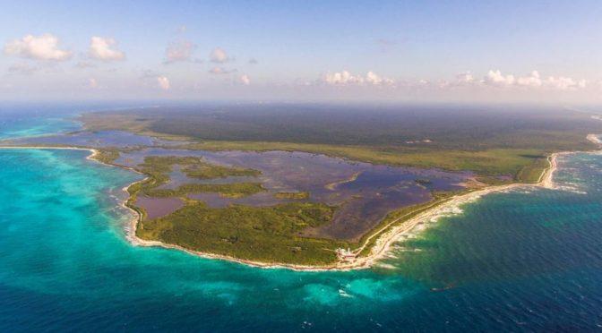 Cozumel: Cierran zona de arrecifes para salvar corales (Televisa.News)