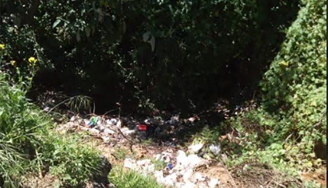 Puebla: Organizaciones civiles urgen limpieza del río Atoyac (Municipios)