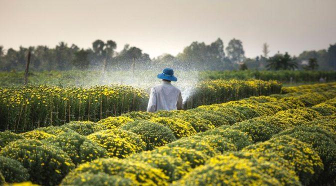 México: Características del Agua Residual para Riego Agrícola (Domos)