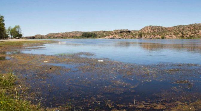 """Argentina: """"Abrazo al río Negro"""" contra la contaminación (Imcipolletti)"""