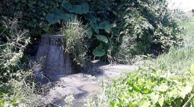 Guerrero: Se agudiza contaminación por aguas residuales en río Atoyac (Quadratin)