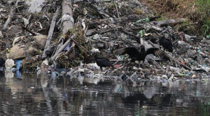 Contaminados el 25% de los ríos de América Latina y el Caribe (La Verdad)