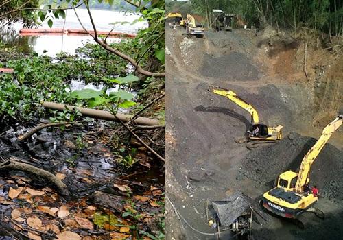 Michoacán: Invade crimen organizado reservas naturales (Vanguardia)