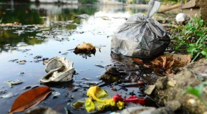Microalga y basura acaban con ríos y lagunas en Tabasco (Diario Presente)