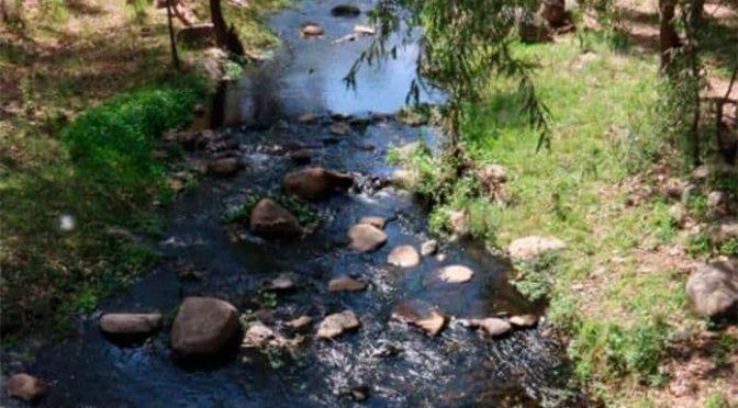 San Luis Potosí: Denuncian que contaminación en río de Escalerillas afecta a niños (Pulso)