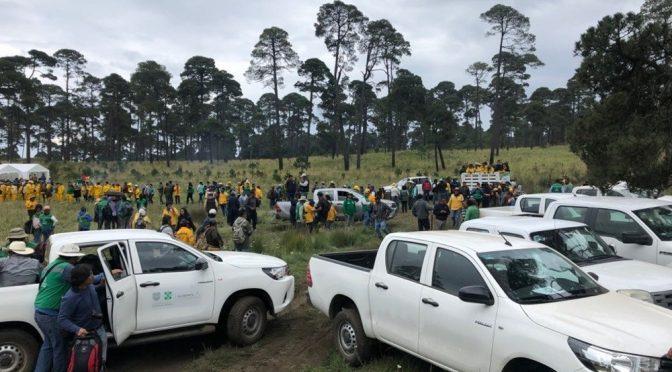 CDMX: Guardia Nacional apoyará en restauración de bosques en Milpa Alta (Maya Comunicación)