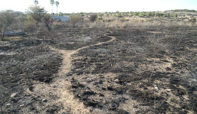 Nuevas tecnologías y estudios científicos aportan soluciones a la erosión del suelo en Aguascalientes (La Jornada Aguascalientes)
