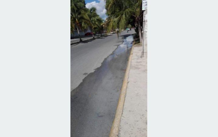Yucatán: Indigna a cancunenses desperdicio de agua potable (La Verdad)
