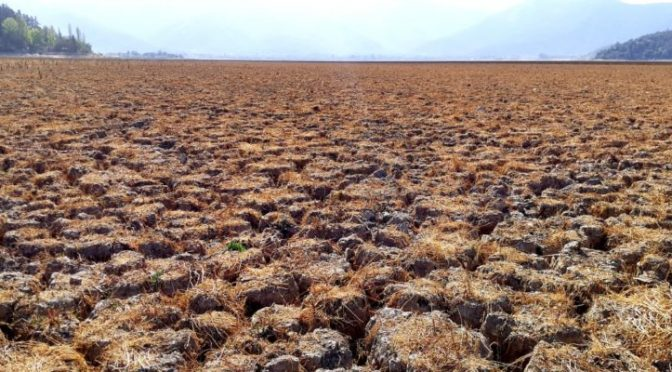 Chile: Gobierno estudia bombardear nubes para generar lluvia y enfrentar sequía (BioBioChile)