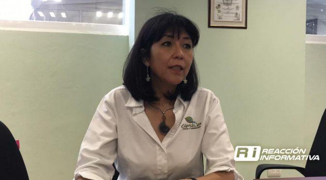 Sinaloa: Urge regular la extracción de agua de los mantos freáticos: Conselva (Reacción Informativa)