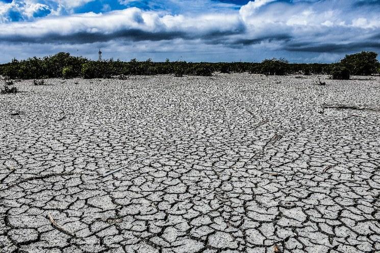 CDMX: Sequía afecta al 66% del territorio nacional: Conagua (La Jornada)