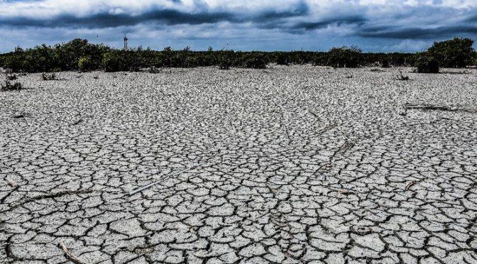 Sequía afecta al 66% del territorio nacional: Conagua (La Jornada)