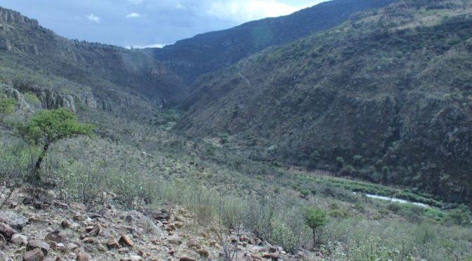 Zacatecas: Investigan a empresa que negoció terrenos para el proyecto Milpillas (Zacatecas en Imagen)