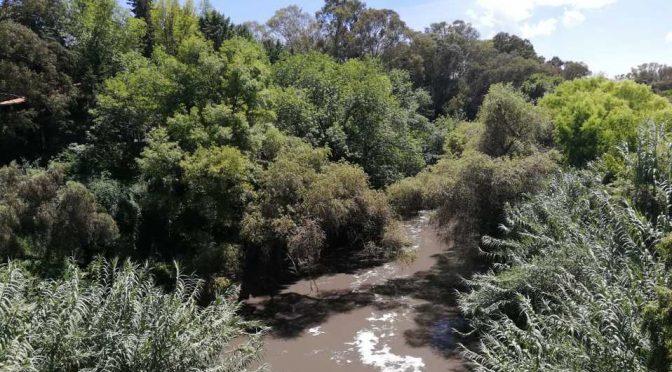 Puebla: Detecta 200 mil bacterias de origen fecal en el Atoyac (Milenio)