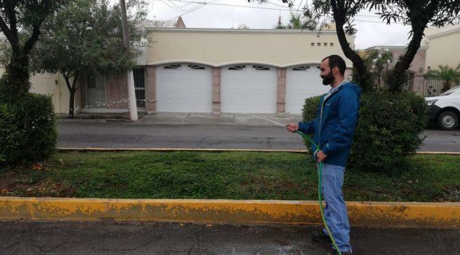 Coahuila: Lagunero aprovecha agua de lluvia y riega árboles de su colonia (Milenio)