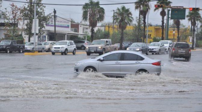 Tamaulipas: Fernand dejó pocos beneficios ( Centro Noticias Tamaulipas)