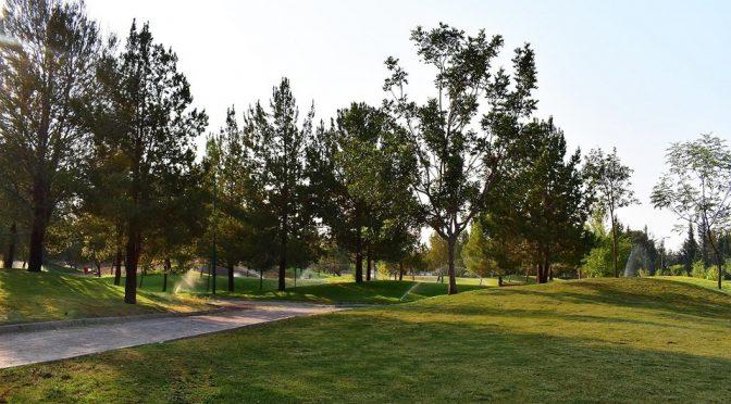 León: Necesario que Sapal emita postura de humedal en los Cárcamos (Milenio)