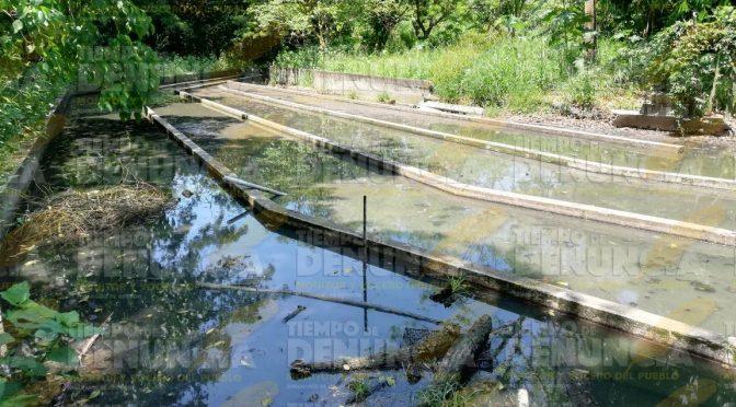 Veracruz: Planta de tratamiento, foco de contaminación (El mundo)