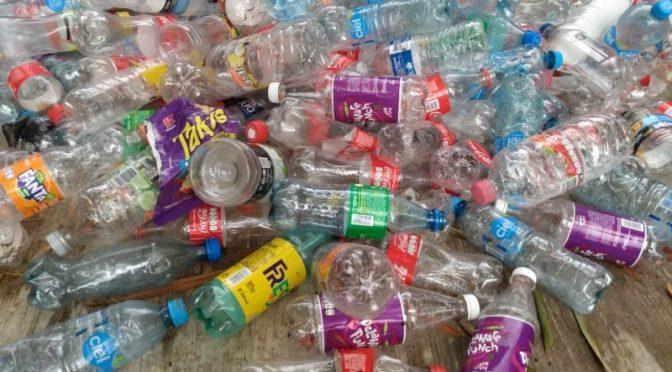 Veracruz: Recolección de PET otorgaría agua potable a colonias (Meganoticias)