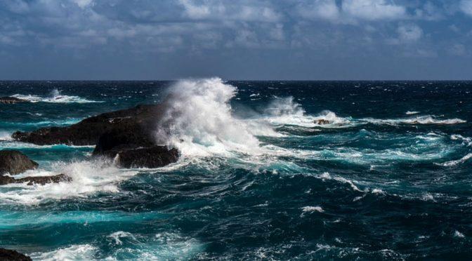 Baja California: Con planta, BerryMex usa agua de mar en riego (Milenio)