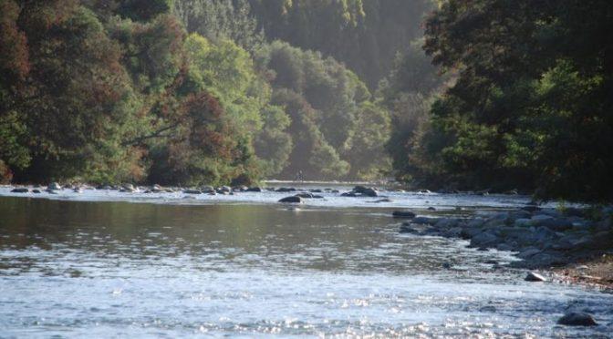 Chile: : Las aguas del Río Renaico las quieren convertir en represa y están siendo rematadas (La clave)