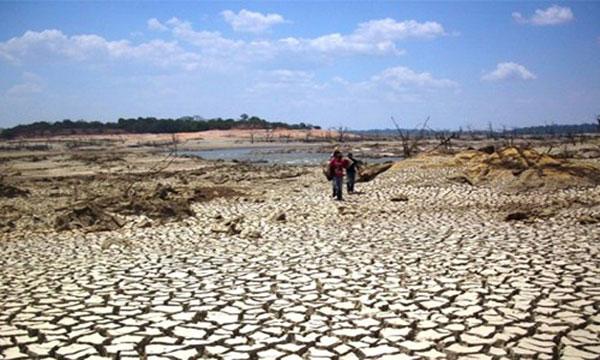 México: Impulsan Sader y gobiernos de los estados plan de atención a la sequía (InfoRural)