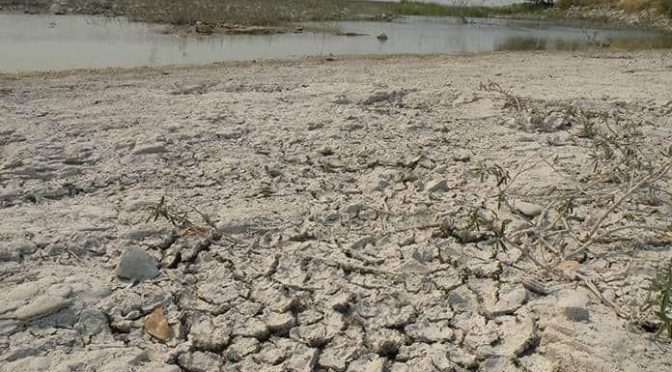 San Luis Potosí: Sequía amenaza con hambruna a la Huasteca (Pulso)