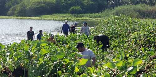 Colima: acusan a granjas camaronícolas de contaminar estero (Inforural)