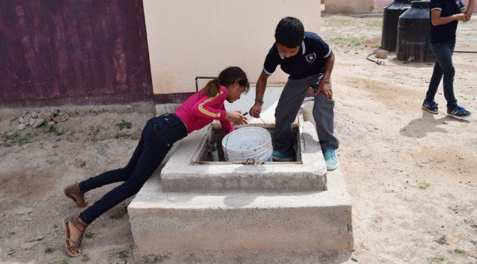 Torreón: El agua sí está limpia, nada más que trae animalitos (El Siglo de Torreón)