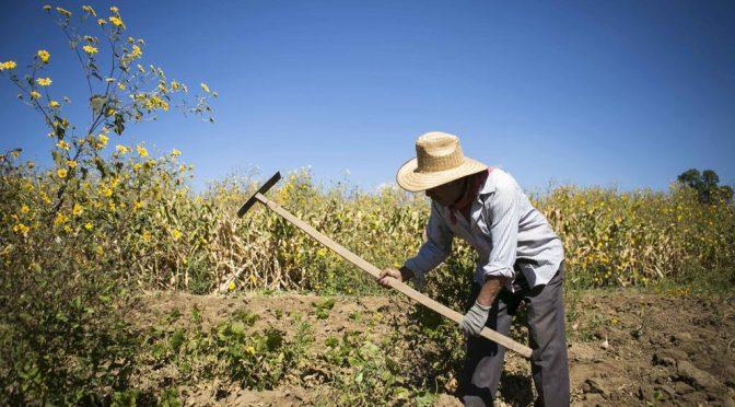 CDMX: Diputados aceptan que campesinos no paguen por el uso del agua (El Mañana)