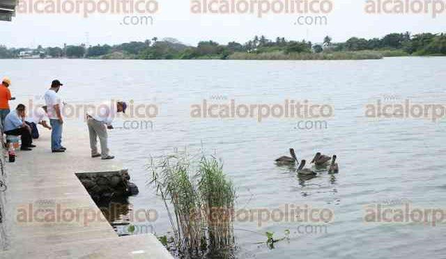 Veracruz: El río Jamapa presenta también contaminación: ITBOCA (Vanguardia)