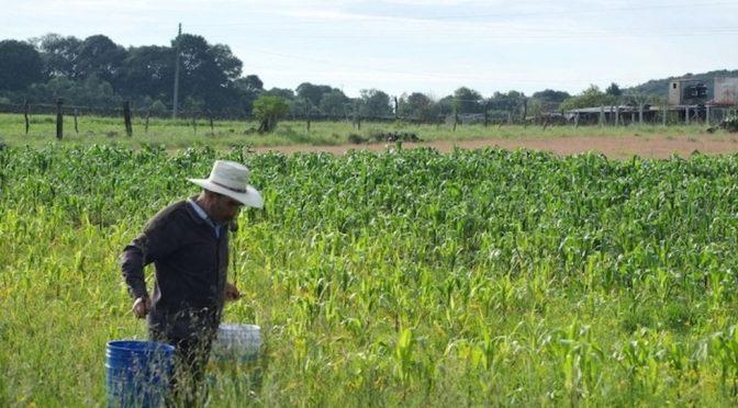 Conagua regaló 31% del agua a Femsa, Nestlé, Bachoco, Heineken y Pepsi; 66.6% del territorio sufre sequía (La Prensa)