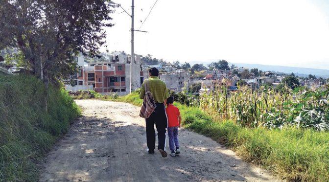 CDMX: Acuerdan ampararse contra obra pobladores de Totoltepec  (La Jornada)