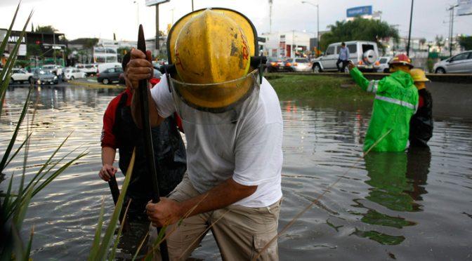 Jalisco: Presentarán proyecto contra inundaciones (NTR)
