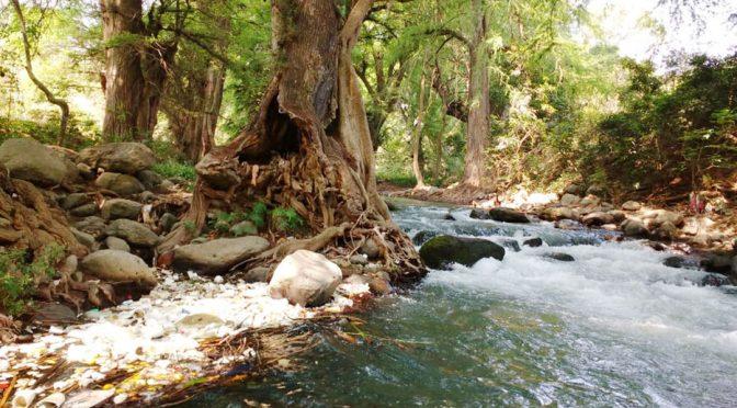 Veracruz: Caen al río Blanco 40% de aguas residuales (El mundo)