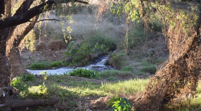 Aguascalientes: Repensar el río San Pedro/ agenda urbana (La jornada)