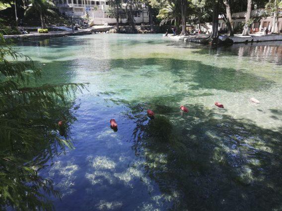 Padece México de alto estrés hídrico (El Mundo)